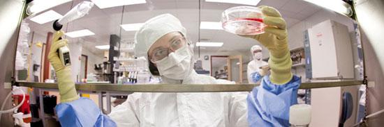 regenerative-medicine-organogenesis